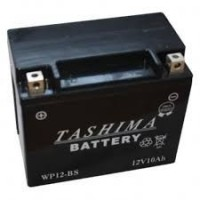 Batterie WP12BS / YTX12-BS Gel 10Ah 12V Tashima